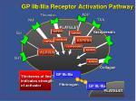 gp iib iiia receptor activation pathway