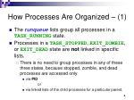 how processes are organized 1