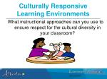 culturally responsive learning environments