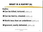 what is a kafir b