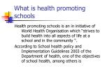 what is health promoting schools
