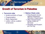 growth of terrorism in palestine