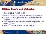 militant salafis and wahhabis