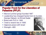 popular front for the liberation of palestine pflp
