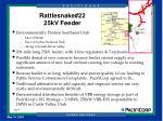 rattlesnake 22 25kv feeder
