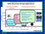 utility electricity storage applications