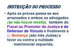 instru o do processo1
