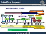 enlisted force development