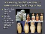 my mummy my self or how to make a mummy in 30 days or less
