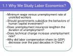 1 1 why we study labor economics2