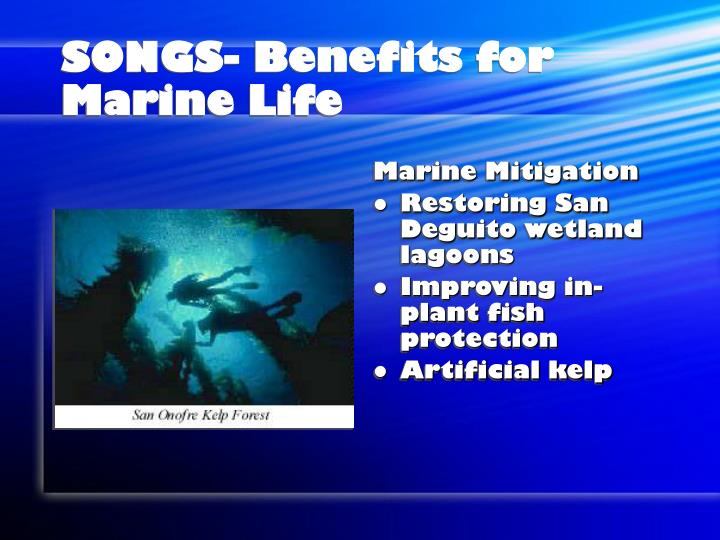 SONGS- Benefits for Marine Life