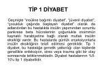 t p 1 d yabet