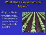 what does phytochemical mean