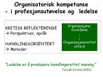 organisatorisk kompetanse i profesjonsut velse og ledelse