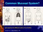 common mucosal system