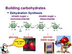 building carbohydrates1