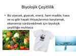 biyolojik e itlilik3