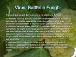 virus batteri e funghi