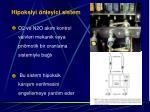 hipoksiyi nleyici sistem