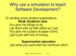 why use a simulation to teach software development1