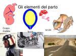 gli elementi del parto