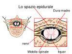lo spazio epidurale