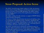 straw proposal action items