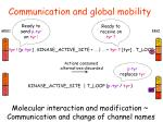 communication and global mobility
