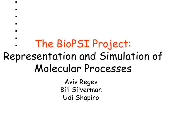 the biopsi project representation and simulation of molecular processes n.