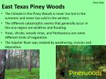 east texas piney woods