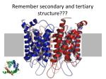 remember secondary and tertiary structure