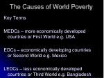 the causes of world poverty