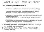 what is life was ist leben4