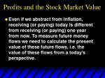 profits and the stock market value1