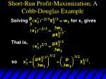 short run profit maximization a cobb douglas example1