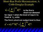 short run profit maximization a cobb douglas example3