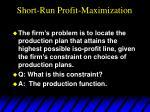 short run profit maximization1