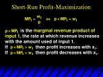 short run profit maximization3