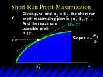 short run profit maximization6