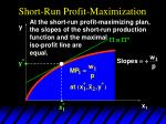 short run profit maximization7