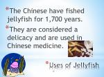 uses of jellyfish