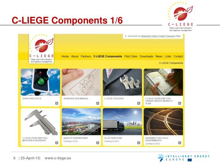 C-LIEGE Components 1/6