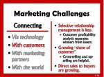 marketing challenges2