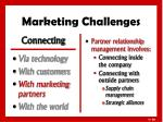marketing challenges3