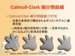 catmull clark