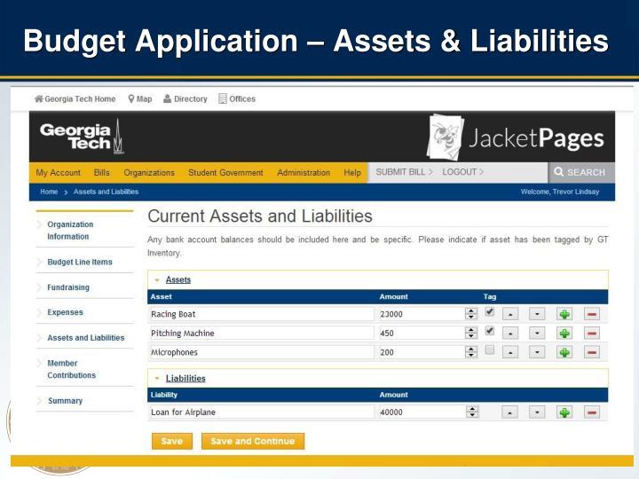 Budget Application – Assets & Liabilities