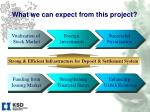 what we can expect from this project