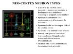 neo cortex neuron types