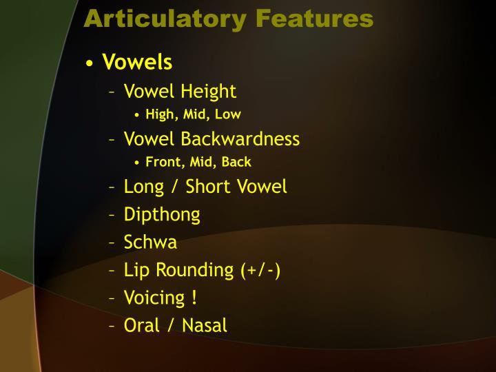 Articulatory Features