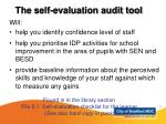 the self evaluation audit tool